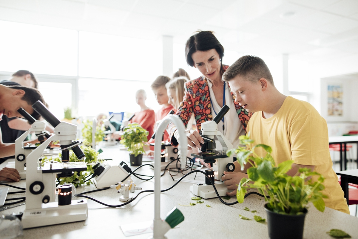 A group of students in a science class. The class is working on projects where they are examining plant leaves in the microscope. A teacher is assisting a young man with down's syndrome.